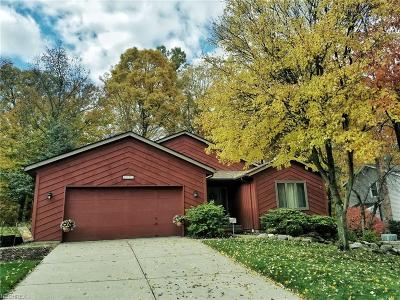 Brecksville Single Family Home For Sale: 8422 Settlers Pass