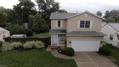 Mayfield Heights Single Family Home For Sale: 1127 Commonwealth Ave