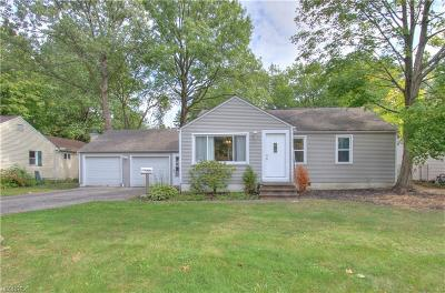 Mentor Single Family Home For Sale: 8091 Broadmoor Rd