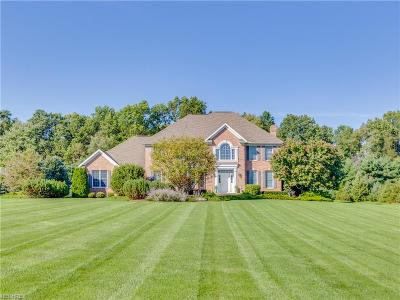 Wadsworth Single Family Home For Sale: 197 Hahns Way