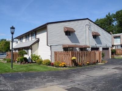 Parma Condo/Townhouse For Sale: 6466 State Rd #M12