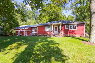 Olmsted Falls Single Family Home For Sale: 26800 Bagley Rd
