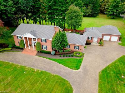 Canfield Single Family Home For Sale: 7744 Spring Lake Ln