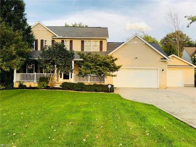 Lake County Single Family Home For Sale: 4401 Turney Rd