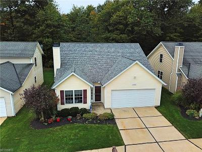 Geauga County Condo/Townhouse For Sale: 15394 High Pointe Cir
