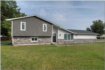 Lorain Single Family Home For Sale: 4310 Meister Rd