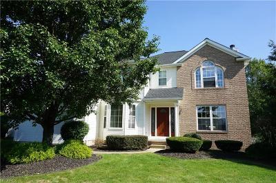 Medina Single Family Home For Sale: 6127 Emerald Lakes Dr