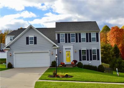 Copley Single Family Home For Sale: 1166 Jonah Dr