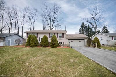 Austintown Single Family Home For Sale: 3841 Nottingham Ave