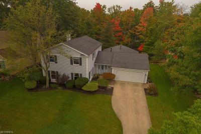 North Royalton Single Family Home For Sale: 12770 North Star Dr