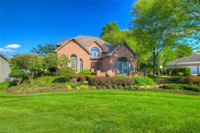 Canfield Single Family Home For Sale: 461 Shadydale Dr