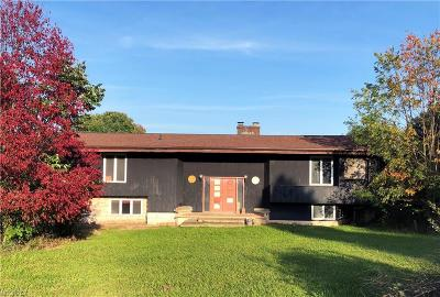 Hinckley Single Family Home For Sale: 1601 King Rd