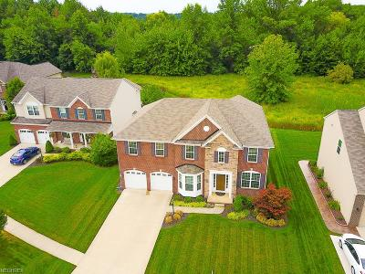 North Ridgeville Single Family Home For Sale: 34593 Braemore Dr