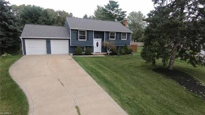 Painesville OH Single Family Home For Sale: $184,900