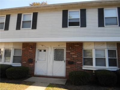 Painesville OH Condo/Townhouse For Sale: $41,900