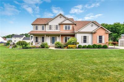 Canfield Single Family Home For Sale: 85 Sandstone Ln