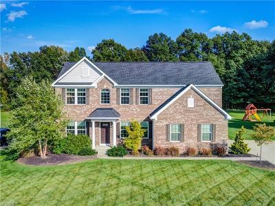 Avon Single Family Home For Sale: 2579 Palmer Ln