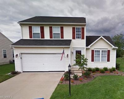 North Ridgeville Single Family Home For Sale: 8522 Antlers Trail