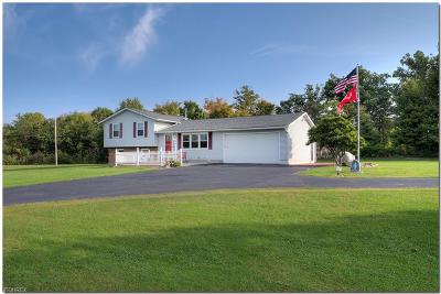 Litchfield Single Family Home For Sale: 9752 Crow Rd