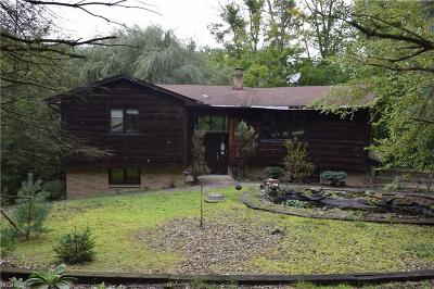 Brecksville Single Family Home For Sale: 8358 Whitewood Rd