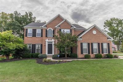 Avon Single Family Home For Sale: 38612 Avondale Dr