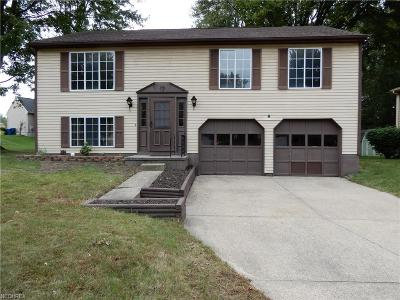 Painesville Single Family Home For Sale: 608 Trailwood Dr