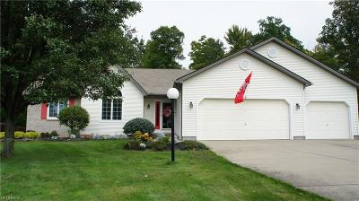 Austintown Single Family Home For Sale: 225 Clearwater Cv North