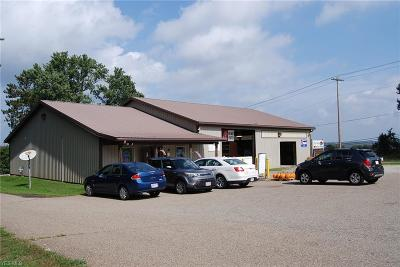 Zanesville Commercial For Sale: 3639 Olde Falls Rd