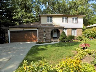 Lorain County Single Family Home For Sale: 4500 Mapleview Dr