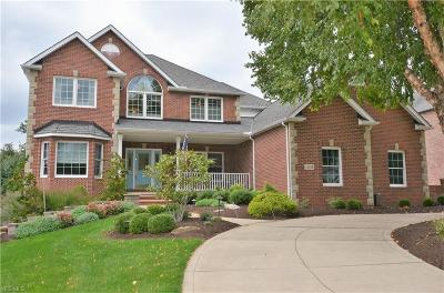Strongsville Single Family Home For Sale: 20484 Scott Dr