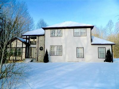 Geauga County Single Family Home For Sale: 19132 Ridgeview Trl