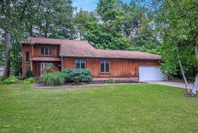 Mentor Single Family Home For Sale: 9171 Gregory Ct