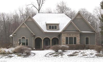 Geauga County Single Family Home For Sale: 16277 Snyder Rd