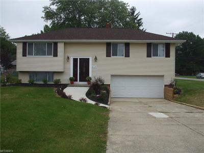 Strongsville Single Family Home For Sale: 8549 Lincolnshire Blvd.