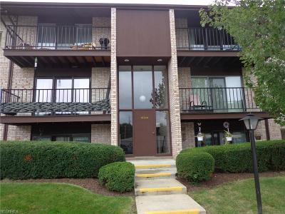 Middleburg Heights Condo/Townhouse For Sale: 16340 Heather Ln #S202