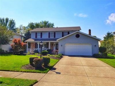 Strongsville Single Family Home For Sale: 17146 Greenwood Dr