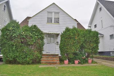 Cleveland Single Family Home For Sale: 3451 East 146th St