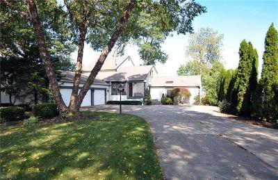 Avon Lake Single Family Home For Sale: 33082 Lake Rd