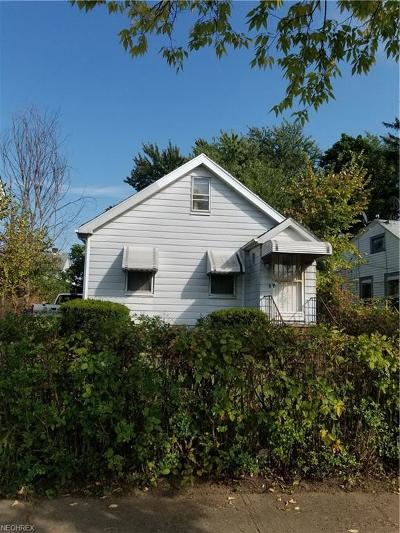 Cleveland Single Family Home For Sale: 3871 East 142nd St