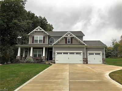 Concord Single Family Home For Sale: 7685 Jo Ann Dr