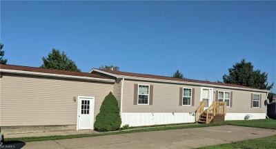 Painesville Single Family Home For Sale: 1588 Bogie Ln