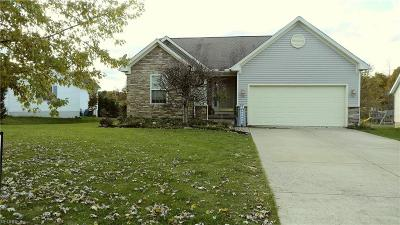 Geauga County Single Family Home For Sale: 14786 Glen Valley Dr