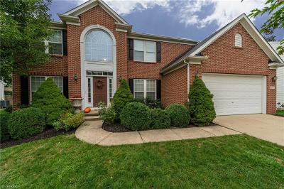 Avon Single Family Home For Sale: 38940 Waverly Dr