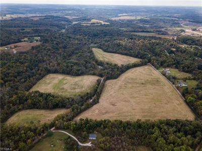Muskingum County Residential Lots & Land For Sale: Palmer Rd