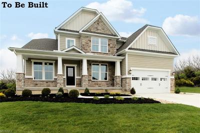 Avon Single Family Home For Sale: 38815 Briar Lakes Dr