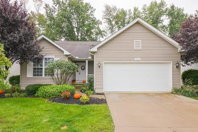 North Ridgeville Single Family Home For Sale: 6239 Dogwood Ln