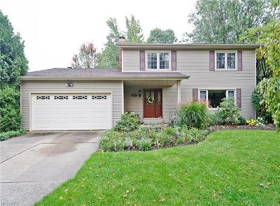 Brunswick Single Family Home For Sale: 3974 Skyview Dr
