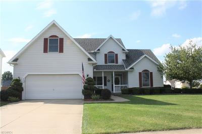 Elyria Single Family Home For Sale: 650 Alexis Dr