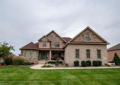 Canfield Single Family Home For Sale: 6763 Langston Run