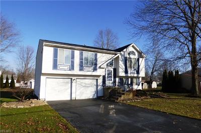 Warren Single Family Home For Sale: 1240 Carson Salt Springs Rd